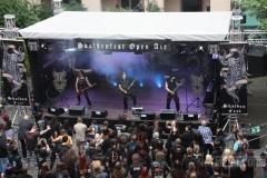 Skaldenfest170617 (119) (2)